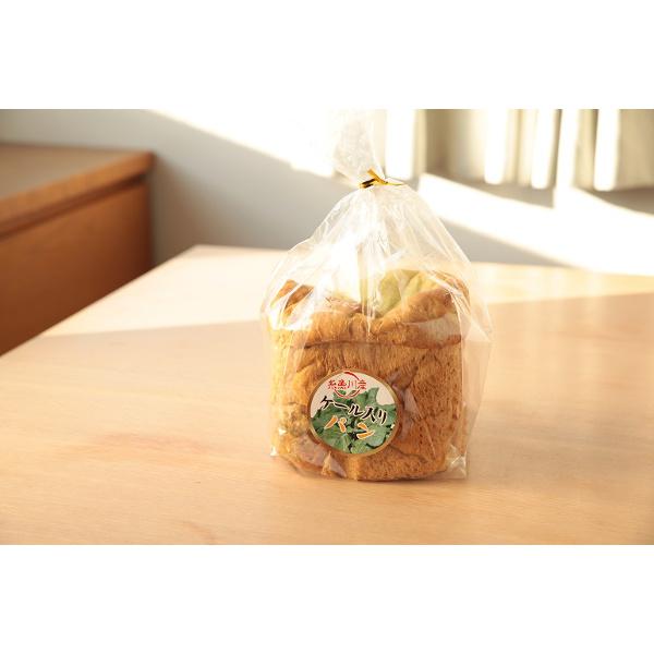 健康的なケールグリーンが鮮やか 毎日の食卓に ケール入り食パン 送料無料 激安 お買い得 キ゛フト 激安通販ショッピング