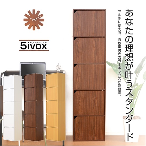 A4サイズ収納OK 扉付きカラーボックス -5ivox-フィボックス[送料無料]