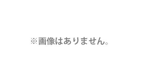 HiKOKI 引出物 カッティングセット 切断トイシ用 180mm用 315116 ディスクグラインダ用別売部品 ハイコーキ 再再販 適用機種G18SP 315-116 日立 工機ホールディングス