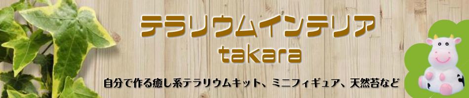 テラリウムインテリアtakara:新規オープンしました。