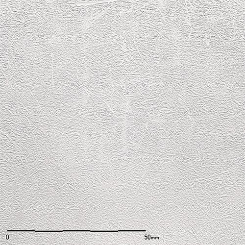 ベルビアン 国内在庫 条件付き送料無料 ベルビアンプラステックス TX-021 1m単位切売 ビーホワイトエンズ セール価格