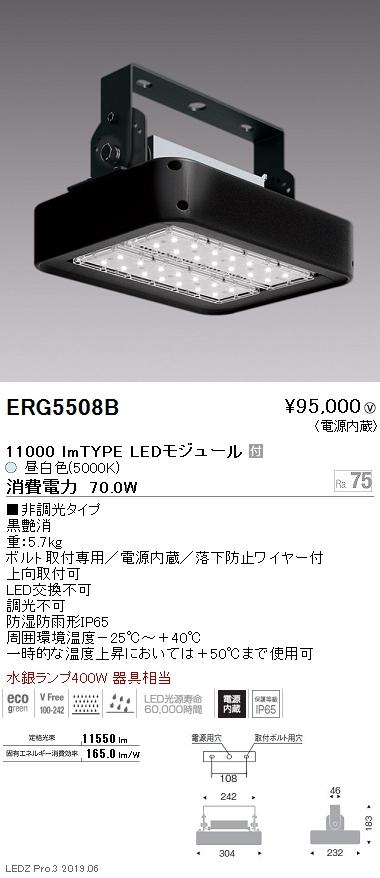 遠藤照明 高天井用照明 防湿防塵軽量小型シーリングライト 11000lmTYPE 5000K(昼白色) ERG5508B