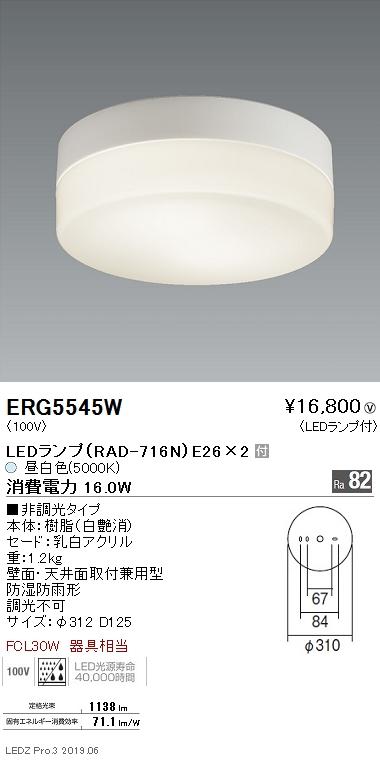 遠藤照明 アウトドアライト シーリングライト 白 E26TYPE