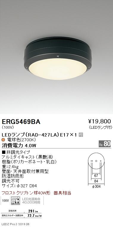遠藤照明 アウトドアライト シーリングライト 黒 E17TYPE ERG5469BA