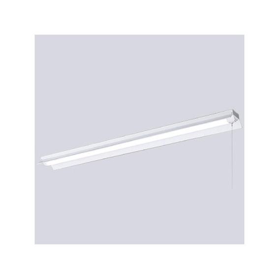 岩崎電気 ELR42501ANPPN9 レディオック LEDベースライト (LEDユニット一体形) 昼白色タイプ