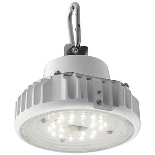 岩崎電気 EQCL1002CSA9 産業用特殊照明機器 レディオックシーリング 低温対応形23Wタイプ(白熱電球用器具代替品)吊下形