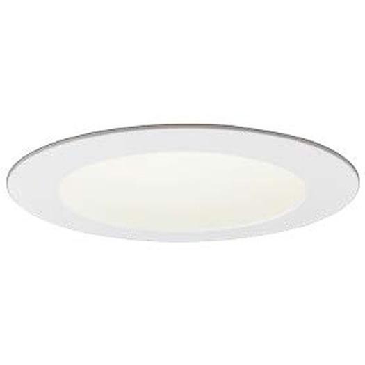 岩崎電気 EDL10014W/WWSAN9 ダウンライト クラス100 温白色