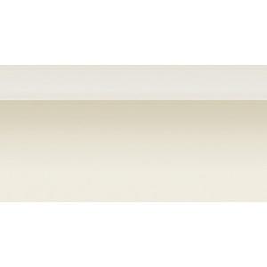 【ケース単位(20本入)】 サンゲツ Sフロア 面材・モール モール材 PM-4765