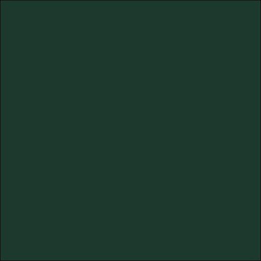 3M スコッチカルXLシリーズ 透過タイプ フォレストグリーン グロス TP3704XL 1000mm×50M