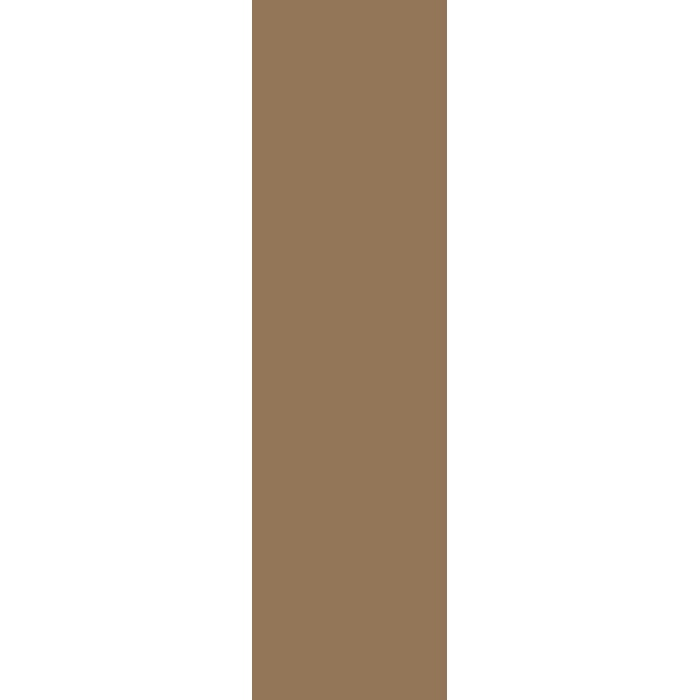 【ケース売り(9m巻)】東リ 巾木 防汚抗菌ワイド巾木 Rアリ WTH30017