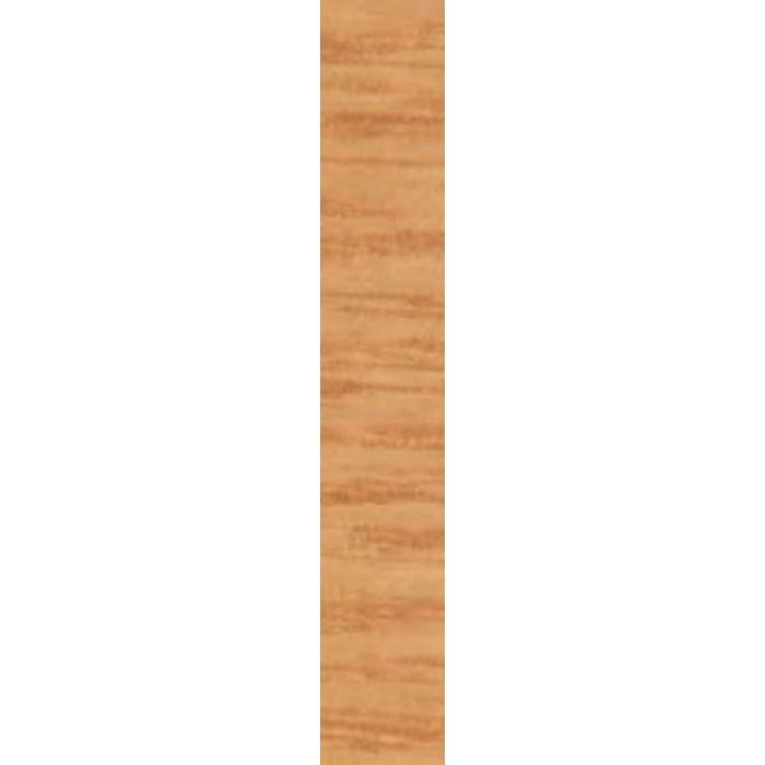 【ケース売り(9m巻)】東リ 巾木 防汚抗菌ワイド巾木 Rアリ WTH300402