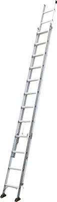 2連はしご6mピカコーポレイション2CSM-60スーパーコスモス【smtb-k】【w3】 【RCPmar4】