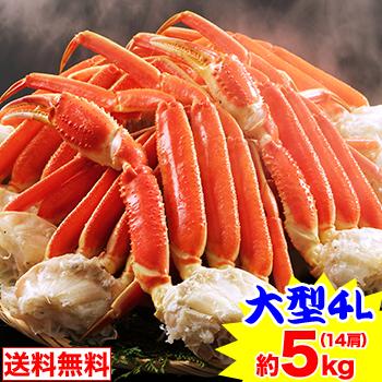 海鮮かに処 大型4Lボイル本ずわい蟹肩脚 14肩(約5kg)[脚肩 ボイル済み 茹で ボイルずわい ボイルズワイ ボイルずわい蟹 ずわい蟹 …