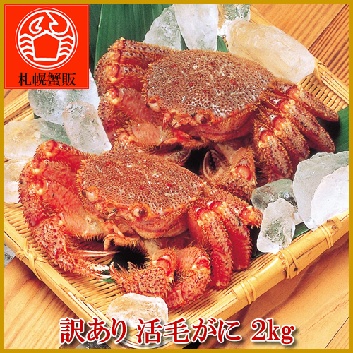 Translation and live hairy crab 2 kg BOX before and after about 3-5 tail with crab and crab / crab / hair / horsehair / live / live /'s barnyacauda / souvenirs / gifts