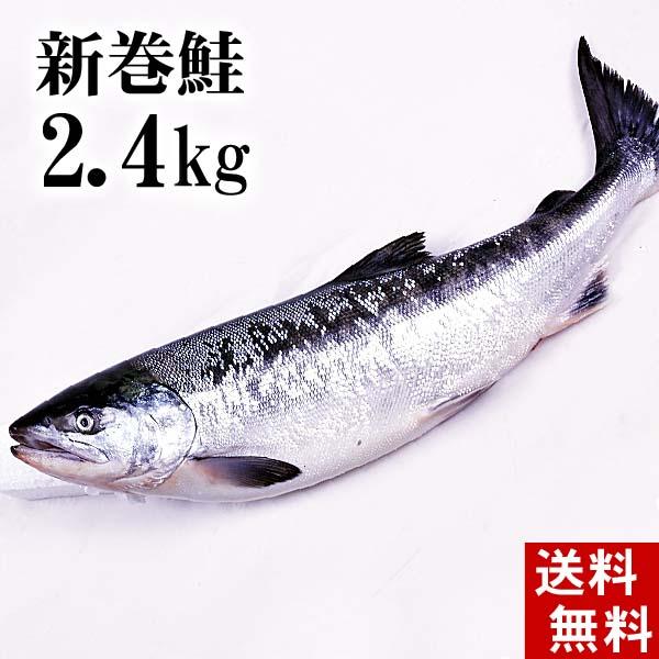 【3月4日20時】スーパーセール(送料無料)新巻鮭の姿 2.4kg 味を引き立てる塩気と、身が引き締まりしっとりとしたサケ本来の味をお楽しみください。焼き魚やしゃけおにぎりも美味しい。北海道グルメ食品 魚介類・シーフード サケ 新巻鮭