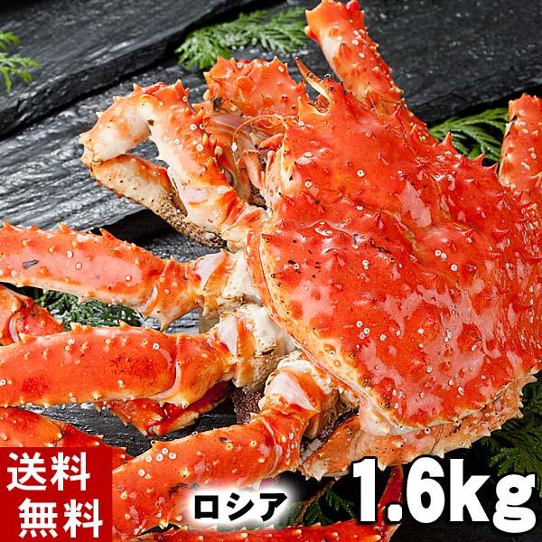 【3月4日20時】スーパーセール(送料無料) タラバガニ たらばがに 姿 1.6kg前後 小型 ボイル冷凍(ロシア産) たらば蟹贈答用のカニ姿です。かに飯や、焼きガニも美味しい。身の入りいいかに足。カニ通販、北海道グルメ  (ギフト食品)