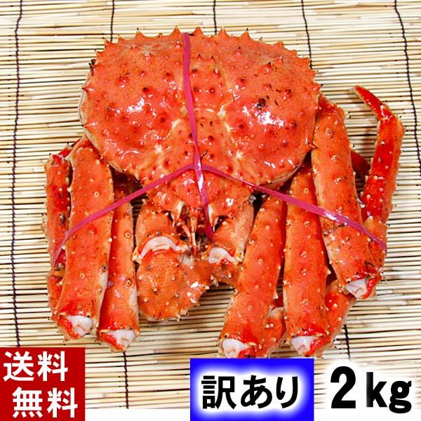 北海道の海鮮お取り寄せ かに太郎 (送料無料)訳あり タラバガニ たらばがに 姿 2kg前後 中型サイズ ボイル冷凍 足御折れありのわけあり品。たらば蟹食べきりサイズのカニ姿です。かに飯や、焼きガニも美味しい。北海道グルメ食品 魚介類・シーフード カニ タラバガニ 冷凍