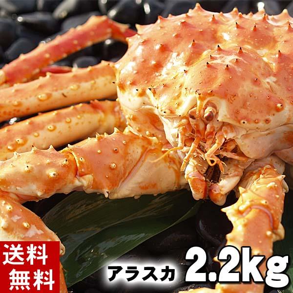 (送料無料) タラバガニ たらばがに 姿 2.2kg前後 中型 ボイル冷凍(アラスカ・北海道産) たらば蟹贈答用のカニ姿です。かに飯や、焼きガニも美味しい。身の入りいいかに足。 魚介類・ カニ ボイル(ギフト食品)  (ギフト食品)