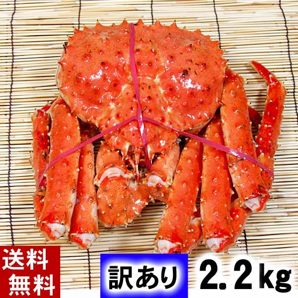 (送料無料)訳あり タラバガニ たらばがに 姿 2.2kg前後 中型サイズ ボイル冷凍 足御折れありのわけあり品。たらば蟹食べきりサイズのカニ姿です。かに飯や、焼きガニも美味しい。 魚介類・シーフード カニ タラバガニ 冷凍 北海道の海鮮お取り寄せ かに太郎