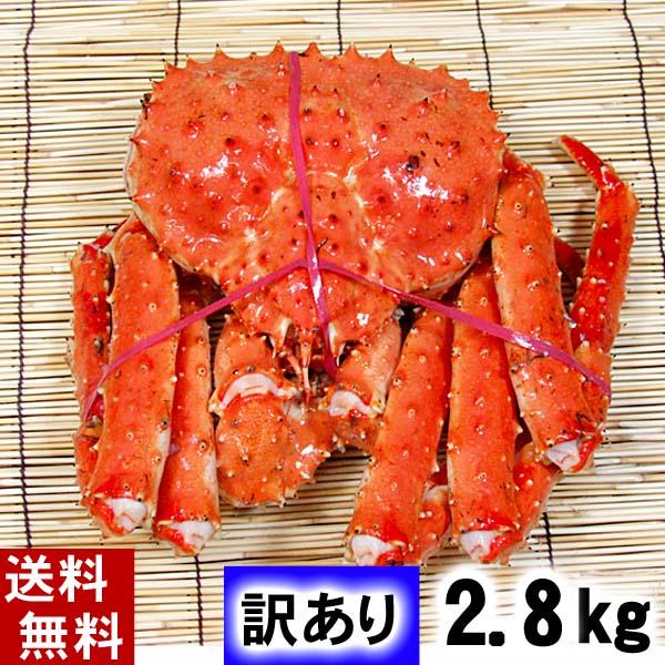 (送料無料) 訳あり タラバガニ たらばがに 姿 2.8kg前後 中型サイズ ボイル冷凍 足御折れありのわけあり品。たらば蟹食べきりサイズのカニ姿です。カニ通販、北海道グルメ (送料無料) 訳あり タラバガニ たらばがに 姿 2.8kg前後 中型サイズ ボイル冷凍 足御折れありのわけあり品。たらば蟹食べきりサイズのカニ姿です。かに飯や、焼きガニも美味しい。カニ通販、北海道グルメ食品 魚介類・シーフード カニ タラバガニ ボイル