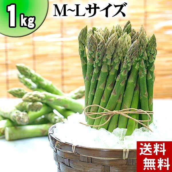 (送料無料)グリーンアスパラ M~Lサイズ混合 1kg前後 美味しい旬の北海道産(美瑛産 名寄産)あすぱらを産地直送。早朝採れたてアスパラガスが食べられるのは春だけ。アスパラベーコンなど料理多彩。北海道グルメ食品 グリーンアスパラガス(ギフト用)