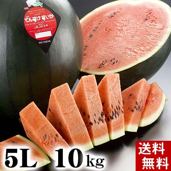 (送料無料)特大でんすけすいか 秀品 5L 10~11kg 黒い皮の中には赤の果肉、伝助・田助西瓜。ギフトに喜ばれる北海道のデンスケスイカ/でんすけスイカ、旬のフルーツ通販 グルメ食品 フルーツ・果物 スイカ 黒皮スイカ でんすけスイカ お中元 御中元 ギフト