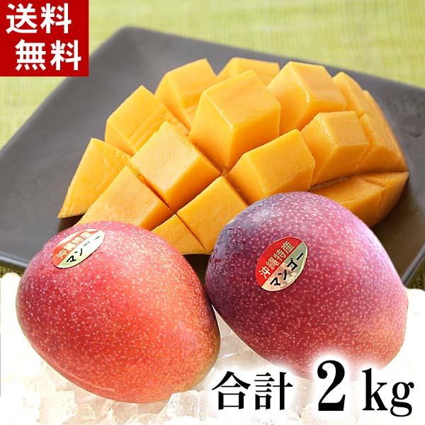 (送料無料)沖縄産 アップルマンゴー 合計2kg(4~8玉入り) 南国沖縄のとれたてまんごー。ミキサーで簡単に作れるマンゴージュースやヨーグルトマンゴーも美味しい。グルメ食品 フルーツ・果物 マンゴー アップルマンゴー