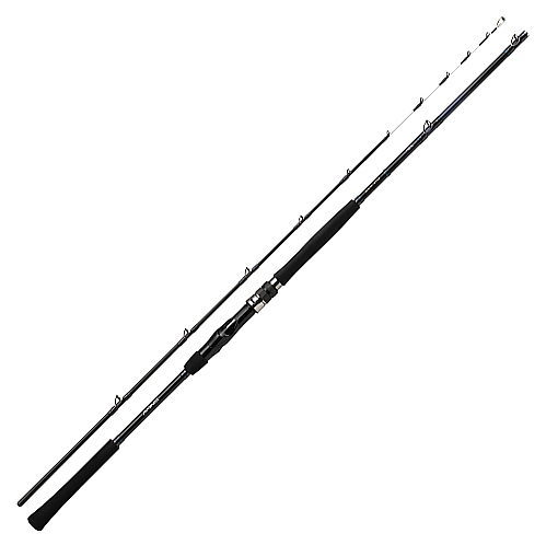 ダイワ ディーオTSG 100-170
