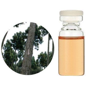 【受注生産】杉(木部)100ml エッセンシャルオイル 精油 生活の木 【送料無料】