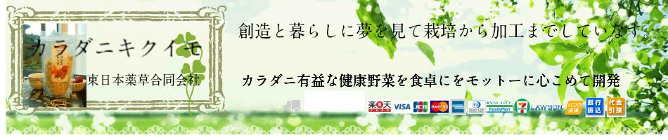 カラダニキクイモ:菊芋茶取扱い店舗