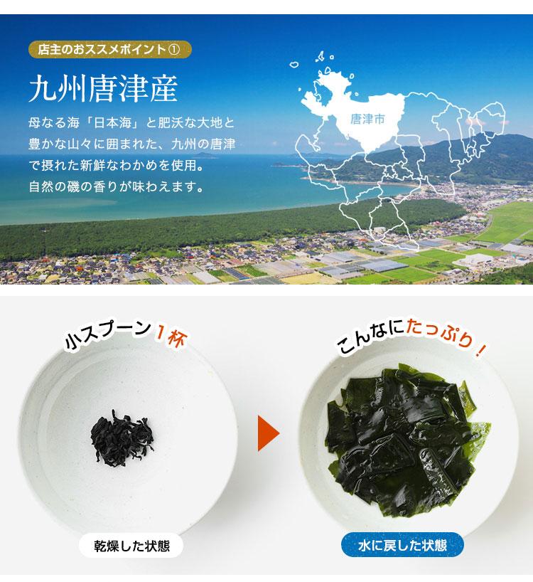【無添加・無着色】九州唐津産 乾燥カットわかめ 30g ミネラル ビタミン カルシウム 食物繊維 ワカメ 若布 乾燥わかめ