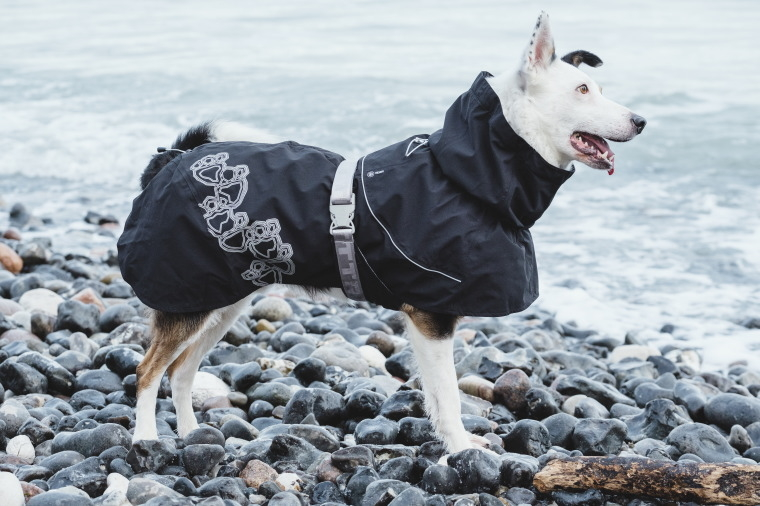 【Hurtta】【フルッタ】・ドッグレインコート 「Deizzle Coat ドリズルコート」中~大型犬用
