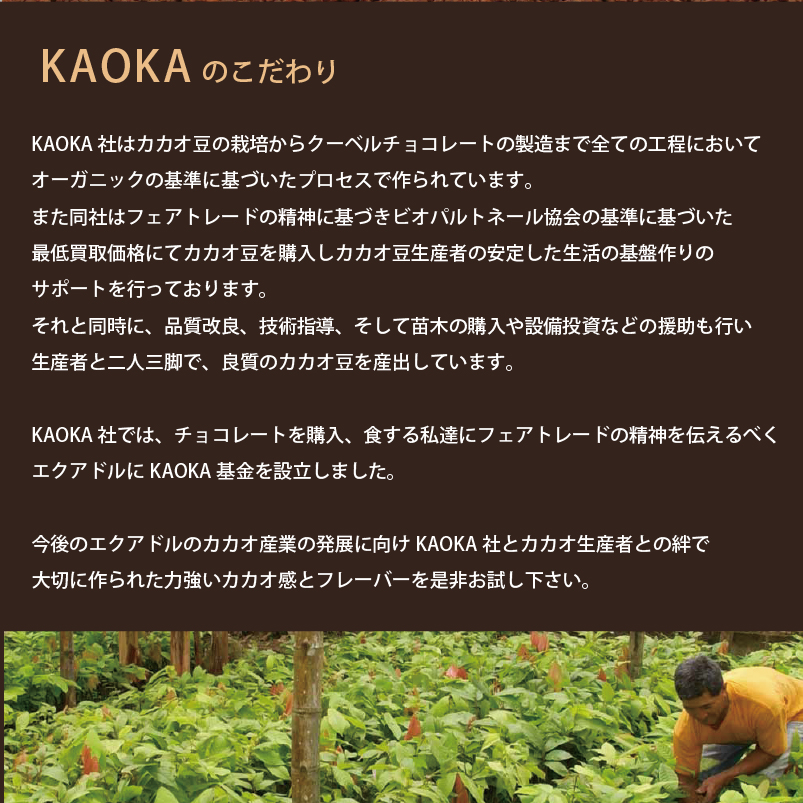\お急ぎください!23:59まで最大P10倍/KAOKA カオカ オーガニックチョコチップ ドミニカドロップ 50% 1kg【夏季冷蔵】