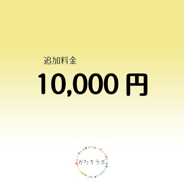 追加料金 10000円
