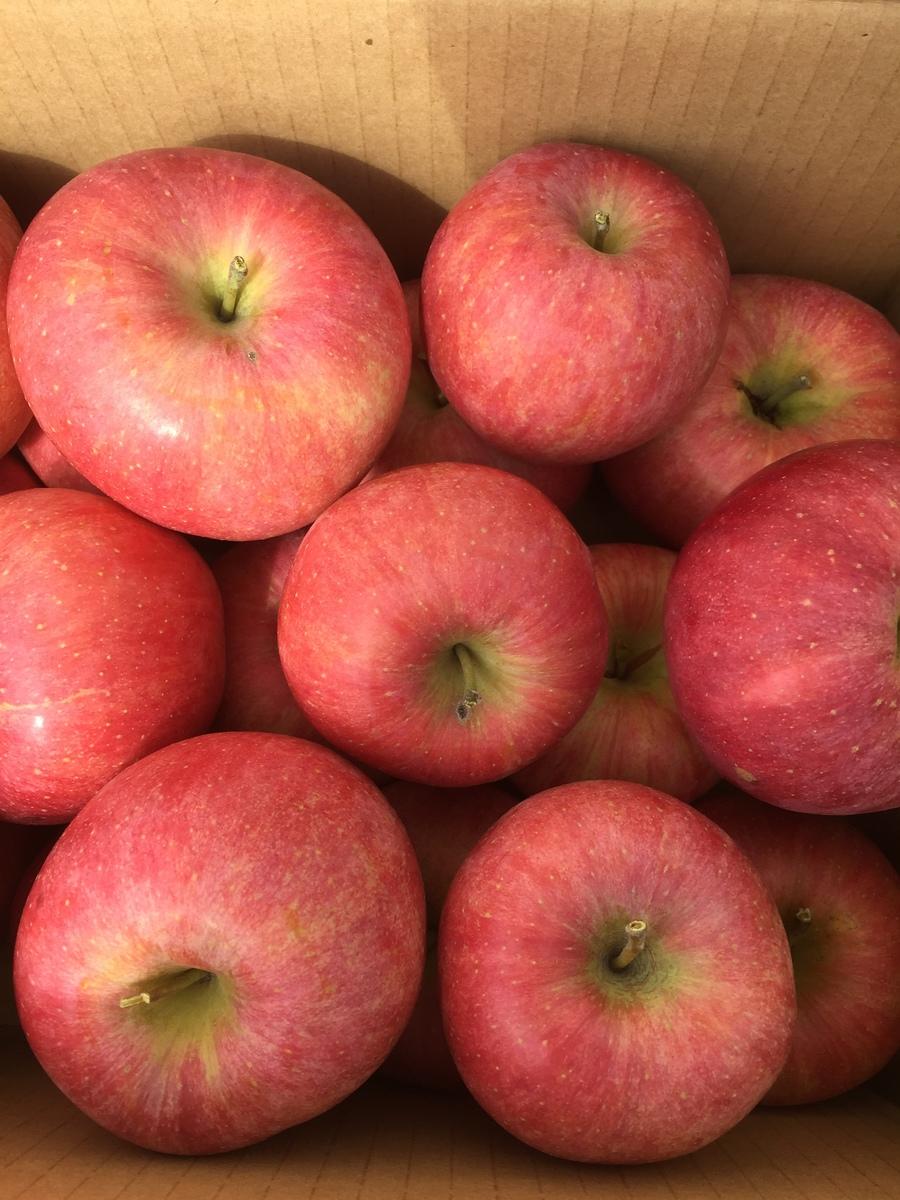 りんごを玄関までお届け 中国 四国 倉 九州地方へのお届けは500円の別途料金をお願い致します 山形県産 訳あり 約4.5~5kg 限定モデル サイズおまかせ 家庭用 自家用 美味しい 山形産りんご お取り寄せ ご当地 林檎 フルーツ 果物 くだもの リンゴ酢 ジュース 煮るりんご ジャム