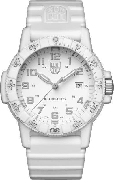 スイス製LUMINOX【ルミノックス】NAVY SEAL 0320【ネイビーシールズ】SEA TURTLE GIANT100m防水腕時計/正規代理店商品