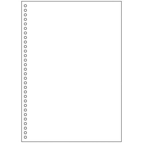 ヒサゴ マルチ帳票エコノミー A4白紙30穴 2500枚