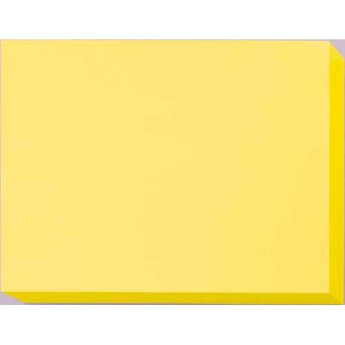 カウネット スタンダードカラー用紙 B4 1箱×2 クリーム
