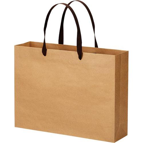 ★商品合計金額3000円(税込)以上送料無料★ クラフトバッグ 平紐 L 10枚