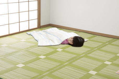 【送料無料】日本アトピー協会推薦カーペット クリーンラグ 本間8畳 382×382cm じゅうたん 絨毯 マット ラグ