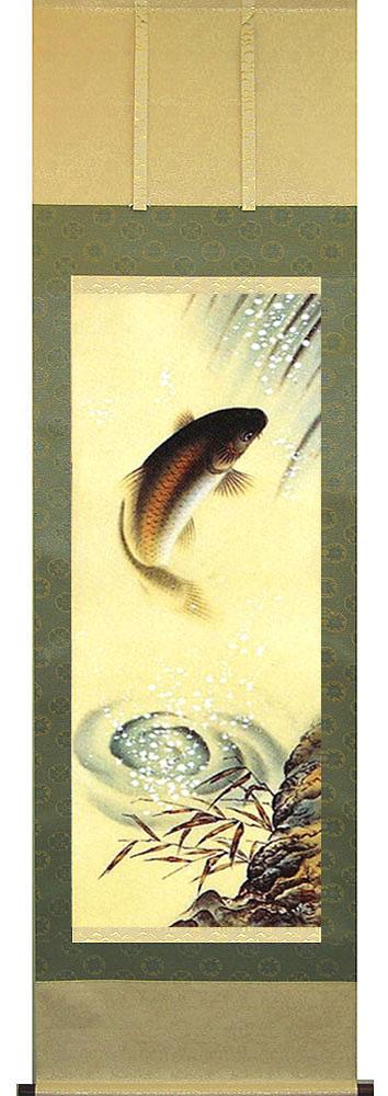 掛け軸 滝上り鯉 足利蕉峰作 鯉・開運・季節の掛軸 【送料無料】【smtb-TK】販売・床の間
