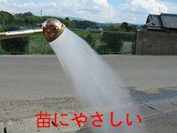 京和 グローイングシャワーPRO-50K 散水ノズル シャワーノズル