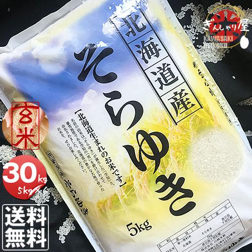 30年産 北海道産 そらゆき 30kg 玄米 (5kg×6袋セット)<玄米/白米/分づき米> 【送料無料】【北海道米 送料込み 米 お米 真空パック選択可】