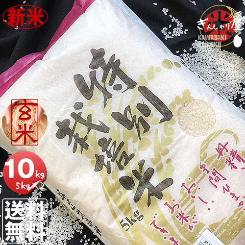 新米 令和元年産 栽培地域限定 JA新すながわ産 特別栽培米 ゆめぴりか 玄米 10kg (5kg×2袋セット) <玄米/白米/分づき米> 【送料無料】【北海道米 送料込み 米 お米 真空パック選択可】