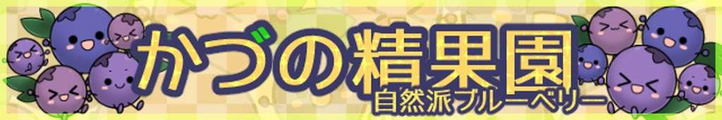 かづの精果園 自然派ブルーベリー:秋田県鹿角市より とびきりのブルーベリーをお届けします!