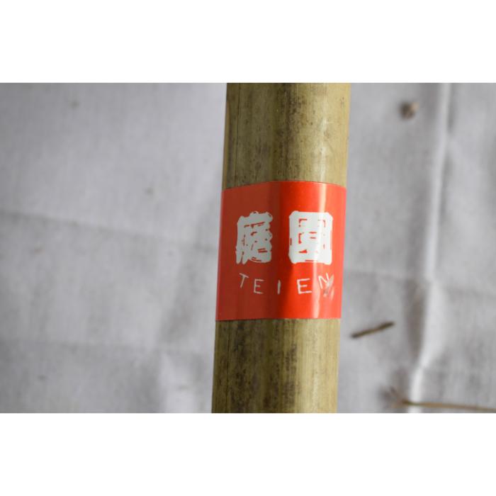 竹箒(庭園) 竹ぼうき(ていえん) 10本