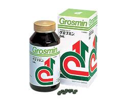 豊富なクロレラエキス(CVE)の高品質「グロスミン2000粒(送料・代引き手数料無料)」10P3Oct12