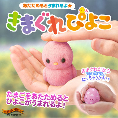 After being warmed in the hand [discontinued] a cute Chick, (but sometimes different than going. ) ★ born warms up and I ♪ Xiao piyoko (pink-Chan)