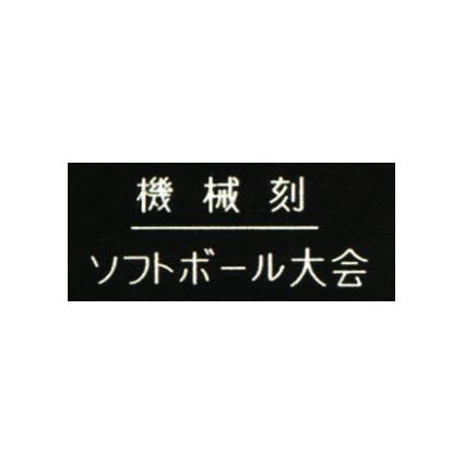 記念品 彫刻 一文字 5☆大好評 機械彫り 入手困難