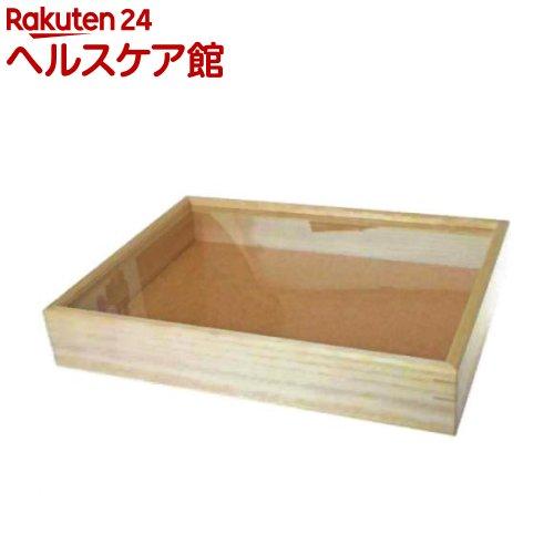志賀昆虫(シガコン) インローガラス蓋式標本箱 大型(1コ入)【志賀昆虫(シガコン)】